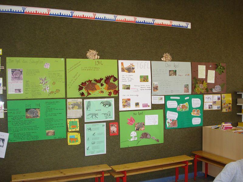 thema igel kindergarten